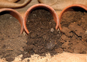 clay oils, loam soils, and sandy soils